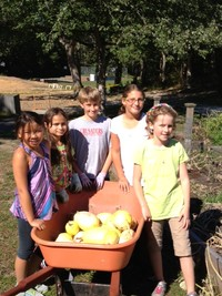 OES Garden Club Fall Harvest